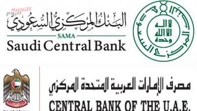 """صورة السعودية والإمارات تكشفان مستجدات مشروع العملة الرقمية المشتركة """"عابر"""""""