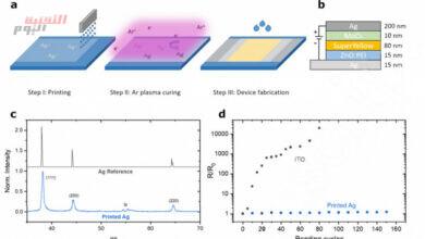 """صورة شاشة OLED مرنة جديدة من تصميم باحثون ألمان و """"Oreltech"""""""
