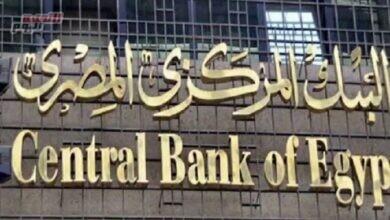 """صورة """"المركزي المصري"""" يوافق على ترخيص خدمة قبول المدفوعات اللاتلامسية على الهاتف المحمول"""