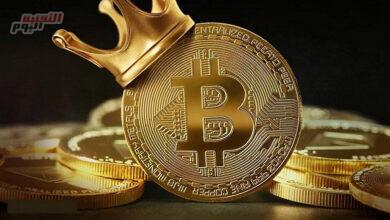 """صورة الرئيس التنفيذي لـTwitter"""" :Bitcoin"""" هو أفضل مرشح للعملة الوطنية للإنترنت"""